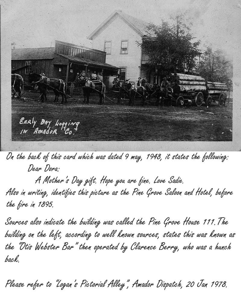 Pine Grove CA History - Logging