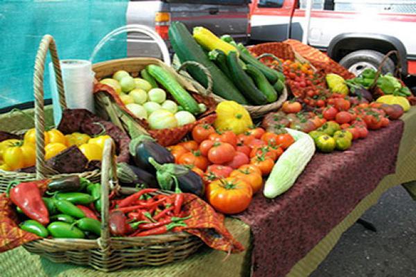 Amador Farmers Market Vendors